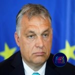 EU's Ministers against Hungary's 'outrageous, shocking yet not surprising' attack to Trans Community.